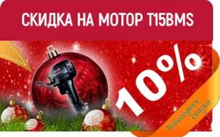 СКИДКА 10% НА МОТОР PARSUN T15BMS